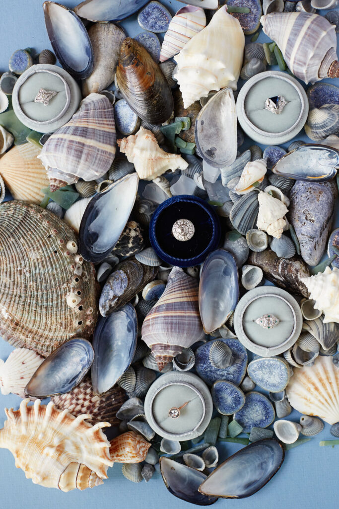 Blue flatlay with a dark blue wedding ring box in center surrounded by seashells.